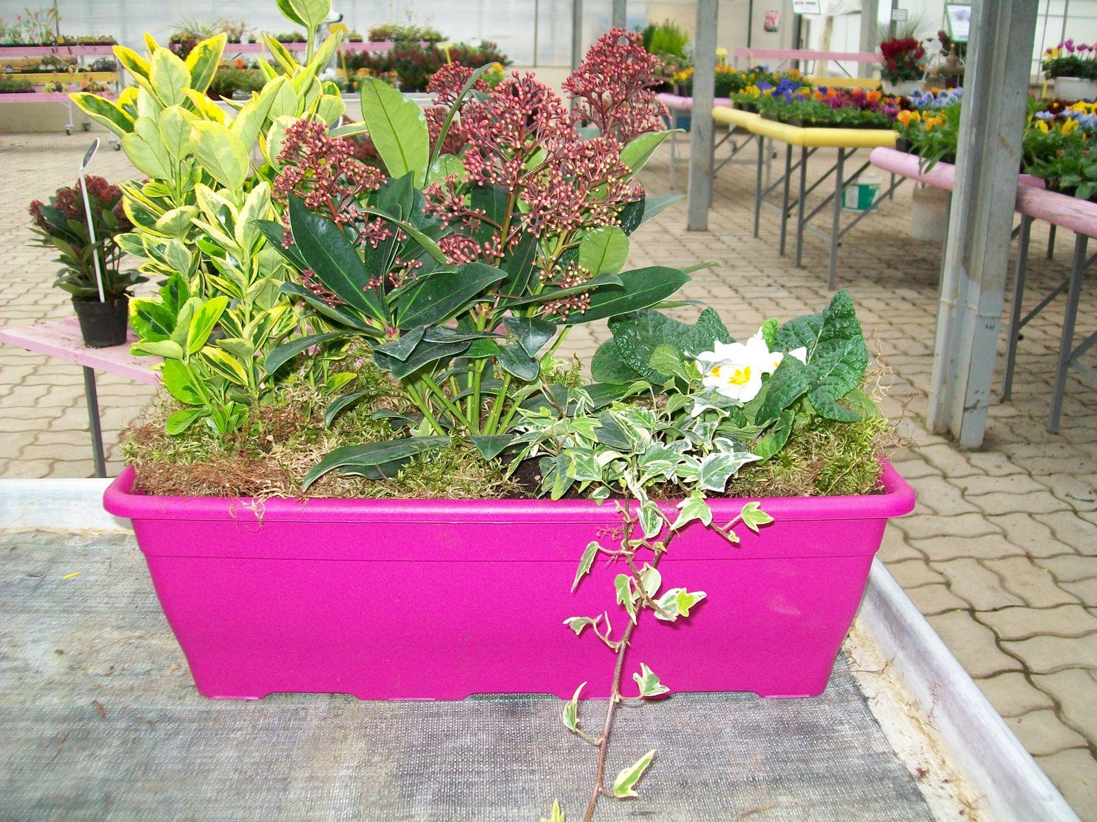 Jardini re pour balcon terrasse en hivers - Jardiniere pour balcon rectangulaire ...